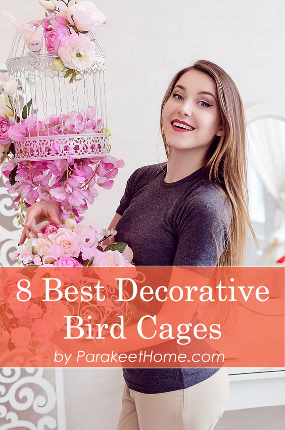 cheap-decorative-bird-cages